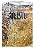 Porsche Drive - Pass Portrait Stelvio: Stilfser Joch - Italien /  Italy - 2757 M