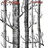 Tapete Prepasted Kontakt Papier 31,6 Quadratfuß Wandverkleidung Birke Bäume White Forest Trunk Selbstklebendes Peeling und Stick Wasserdichtes hängendes Papier für Wanddekoration (0,53 * 5,65 m)