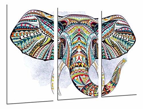 Cuadro Fotográfico Decoracion Mandala Animal Elefante