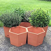 Weston Mill Pottery Terracotta hexagonal herb pots - set of 7