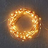 #9: Beauty Lights 3 Meters 30 LED USB Copper String Copper LED lights Warm White Thin Sparkle lights Decorative Fairy LED Lights
