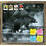ArtzFolio Brown Bear Carrying On His Back A Sort Of Ballast Printed Bulletin Board Notice Pin Board cum Antique Golden Framed Painting 16.8 x 16inch