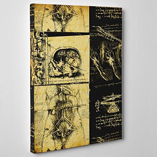QUADRO SU TELA CANVAS - INTELAIATO - PRONTO DA APPENDERE - Leonardo Da Vinci - Studio di Anatomia - Medicina Chirurgia- 50x70cm - Senza Cornice - (cod.339)