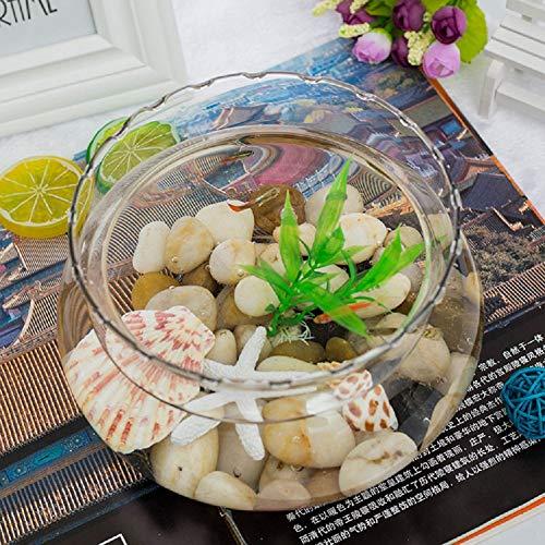 Aquarium Aquarien Transparente Kristallvase Aquarium Wohnzimmer Dekoration Rundes Aquarium- Cobblestone Set-medium (Schalen Fisch Aquarium)