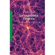La ragnatela cosmica: La misteriosa architettura dell'Universo