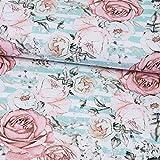Stoffe Werning Baumwolljersey Digitaldruck Rosen auf