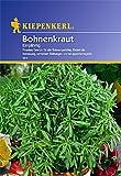 Sperli Gemüsesamen Bohnenkraut einjährig, grün