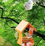 SHKY Bird House Bird Feeder Metal Outdoor Birdhouse Wild Pigeon Bird Equipo Automático De Alimentación,Orange