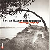 John Cage : In a Landscape