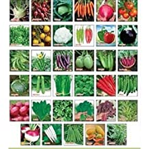SAPRETAILER Variety Combo Pack Of 30 Vegetable Seeds For Terrace And Kitchen Gardening