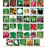 Sapretailer Combo (Pack Of 30) Vegetable Seeds For Terrace And Kitchen Gardening