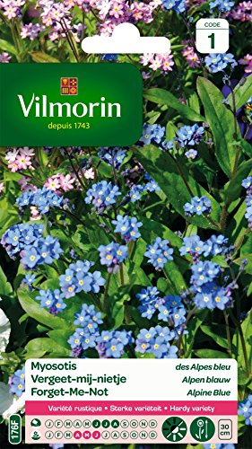 Vilmorin 5380741 Myosotis, Bleu, 90 x 2 x 160 cm