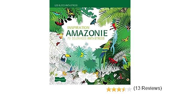 Coloriage Foret De Bambou.Inspiration Amazonie Amazon Fr Collectif Livres