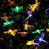 Solar Lichterkette | InnooLight 4,8M 30er LED Libelle Lichteketten Außen Bunt | Solar Garten Beleuchtung für Party, Weihnachten, Outdoor, Fest Deko usw.