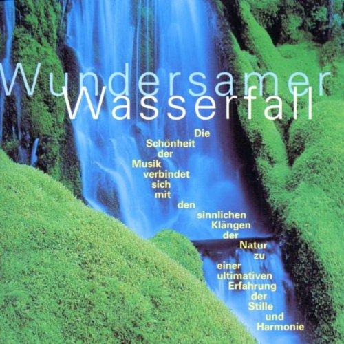 Wundersamer Wasserfall Wasserfall Meditation
