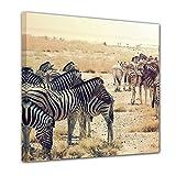 Bilderdepot24 Kunstdruck - Zebras im Sonnenuntergang - Bild auf Leinwand - 40x40 cm einteilig - Leinwandbilder - Bilder als Leinwanddruck - Wandbild