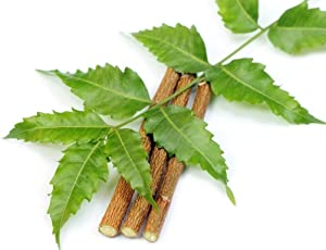 Neem Chew Sticks (20 sticks)