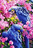 5D DIY Diamond Painting Supplies Crystal Rhinestone Acrylic Paint by Number Kits Embroidery Cross Stitch Arts Craft for Home Wall Decor, Blue Parrot
