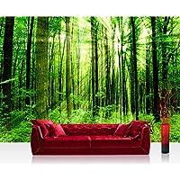 Fotomural, 300x 210cm Premium Plus fotográfico pintado–cuadro de pared–Sunlight Forest–Bosque Árboles rayos de sol verde Ruhe–No. 061