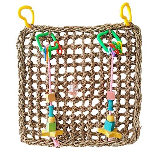 Greenlans Papagei Parakeet mit Net Pet Vogelkäfig mit Hängematte Kauspielzeug, Spielzeug, für kleine Tiere Für Haustiere, Hamster, Papageien Cockatiels conures (Hängematte Kleines Haustier)