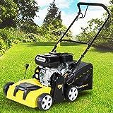 Benzin Vertikutierer Rasenlüfter 2in1 Craftfull Premium 6 Ps 4,4 kw 196cc Motor mit 40L Fangsack und 380 mm Arbeitsbreite