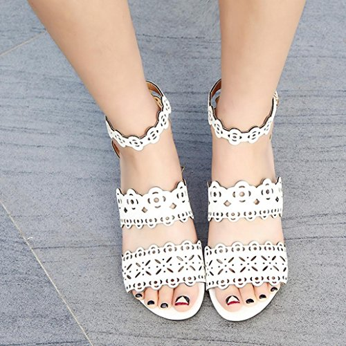 DM&Y 2017 sandali delle donne di Roma cava vento scarpe fibbia tacco basso White