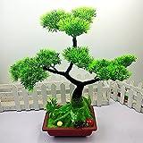 Simulation Pflanze Bonsai, Grünpflanzen, Topfpflanzen, Pinien, Bonsai, B