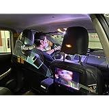 Pantalla/Mampara protección   Indicada para Taxis   Fácil Montaje   Sujeción con Bridas   1000x500x2 mm.: Amazon.es: Hogar