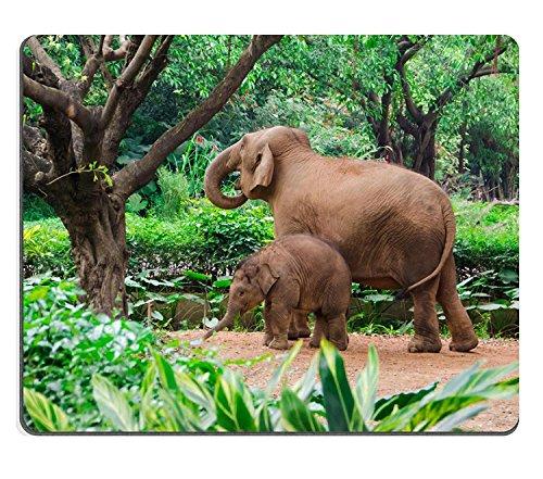 luxlady Gaming Alfombrillas de caucho natural, diseño de familia de elefantes Madre...