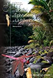 Image de Les Libellules et Éphémères de la Réunion