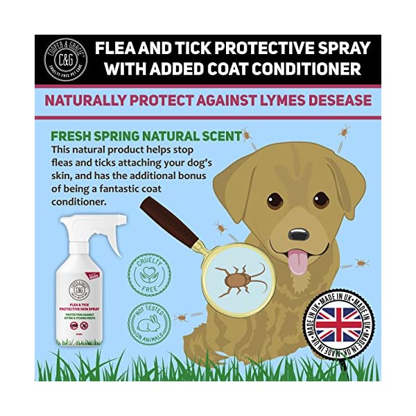 Dog Fleas Protection Spray - Tick and Flea Treatments for Dogs - Best Grooming Coat Conditioner (500ML) 4