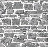 Rasch Tapeten PapierTapete Kollektion Steine und Hölzer, grau, 265620