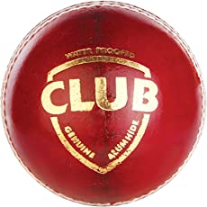 Shrinath Sports SG Club Red Leather Ball