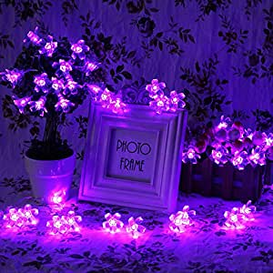 Innoo Tech 4M 40 LED Battery Operated Purple Fairy String Lights,Blossom shape for Christmas, Party, Wedding, New Year Decorations, etc