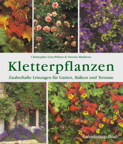 kletterpflanzen-zauberhafte-losungen-fur-garten-balkon-und-terrasse
