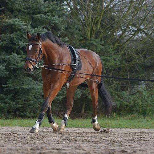Waldhausen Longiersystem, schwarz, Pony/VB, schwarz, Pony/Vollblut