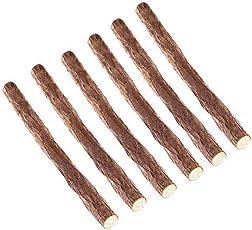 UEETEK 6pcs natürlichen Holz Stick kauen Spielzeug Zahngesundheit Kätzchen Bürste Zähne Haustier Katzefestlichkeit