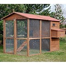 poulailler 10 poules. Black Bedroom Furniture Sets. Home Design Ideas