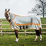 Derby House Pro Fly Rug 6ft6 Silver Autumn Glory