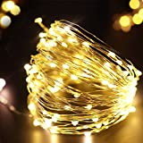 #6: Citra battery operated Sliver String Light 3M 50 LED Decorative String Fairy Lights WARM WHITE