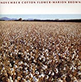 November Cotton Flower