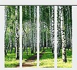 gardinen-for-life Flächenvorhang Birkenwaldweg Set, 4 Frühlings - Schiebevorhänge, Jew. Gr.60x260 cm