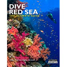 Dive Red Sea: The Ultimate Guide