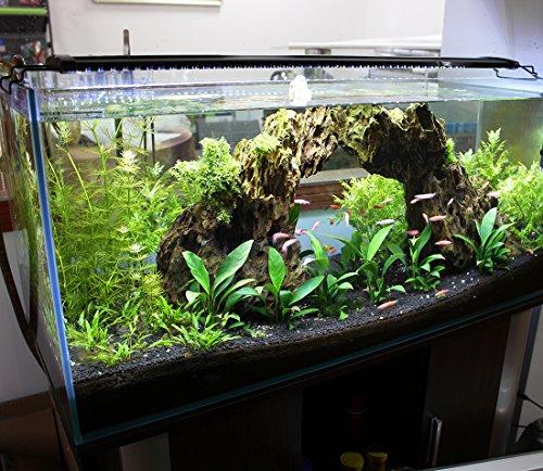 Aquarien Eco LED Aquarium Fische Tank Beleuchtung Aufsetzleuchte Blau Weiß Aquairum Abdeckung 125-140CM (120cm 33W)A060 - 5
