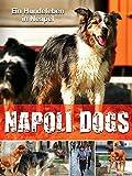 Napoli Dogs - Ein Hundeleben in Neapel