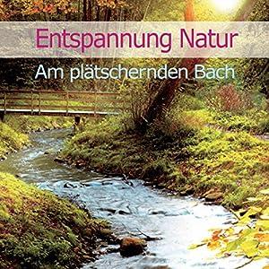 Entspannung Natur: Am plätschernden Bach