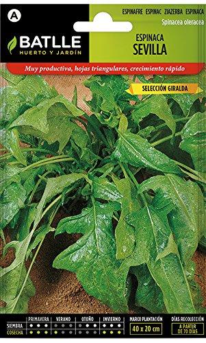 Batlle Gemüsesamen - Spinat Sevilla Ausw. Giralda (1650 Samen)