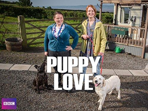 Puppy Love - Staffel 1 [OV]