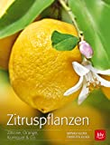 Zitruspflanzen: Zitrone, Orange, Kumquat & Co. (BLV)