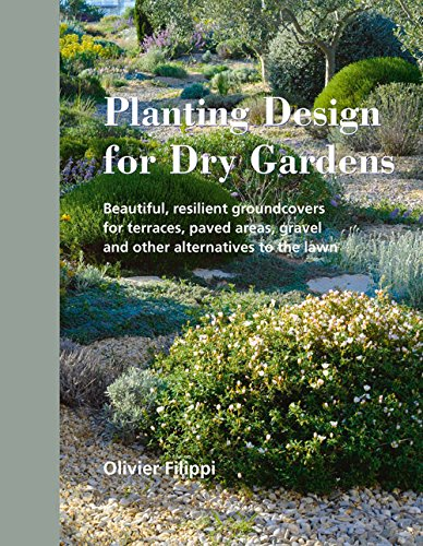 planting-design-for-dry-gardens-beautiful-resilient-groundcovers-for-terraces-paved-areas-gravel-and